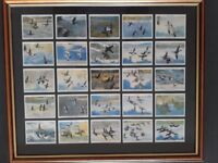 Framed set of 25 John Player cigarette cards issued in 1937. Wild Fowl from Peter Scott paintings