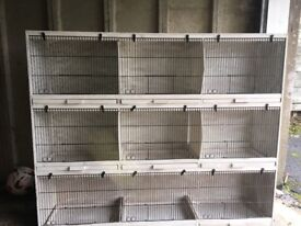 Block of 9 breeding cages excellent condition collection only