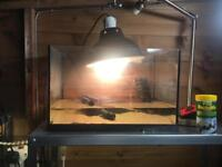 fish tank GLASS TANK ONLY