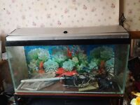 2 Fish tanks for sale £125 . 1 .3ft x 1ft x 18 high . 2nd Tank is 30 inch x12 x 15 high .