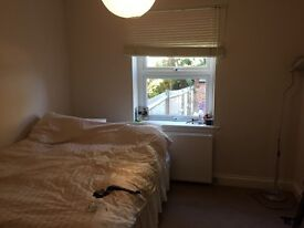 Large double room in spacious flat