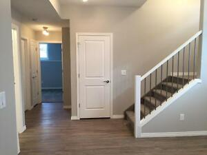Brand new 2 bed Lower level Gorgeous Suite! AMAZING $995!