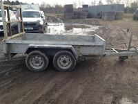 Indespension Challenger Twin Axle Steel Plant Trailer with Ramp