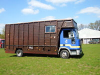 FORD IVECO 3 HORSE HORSEBOX