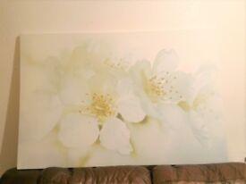 IKEA PJÄTTERYD picture 78x118cm plum blossom