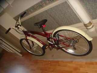 Raleigh Pacific lady's bike half price