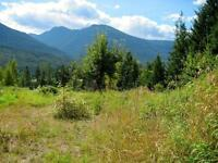 Stunning views of Kootenay Lake from Balfour acreages