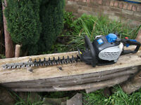 Quality Professional Mac Allister MHTP245-2 25cc Petrol Garden Hedge Trimmer B&Q price £147.00!!
