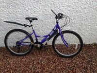 GIRLS BIKE AGE 8-12, GREAT CONDITION AND GOOD PRICE