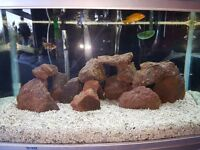 Fish Tank with filter heater and led light