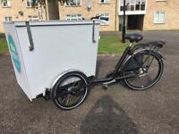 Bakfiets cargo trike for sale - REDUCED PRICE!