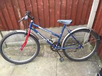 Raleigh Savanna Ladies Mountain Bike