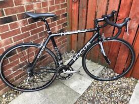 Focus Cayo Carbon Road Bike - 54cm (M)