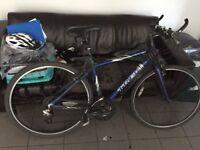 Hybrid Trek bicycle