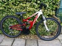 Boys/teenager, mountain bike