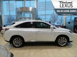 2015 Lexus RX 350 Sportdesign Standard Package