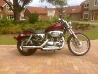 Harley Davidson Sportster 1200 XL1200C