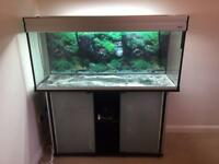 4 ft aquarium setup