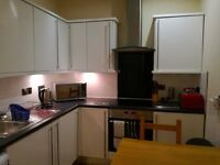 Female professional vegetarian flatmate wanted for cosy double room in centrally located flat
