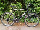 Big Raleigh Firefly mountain bike