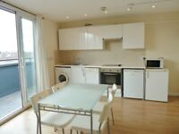 * BRIGHT AND SPACIOUS 1 BED FLAT, 208 HIGH ROAD, WILLESDEN,NW10 2NX *