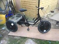 """adult tricycle trike 20"""" wheel size"""