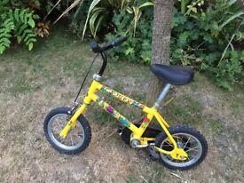 Raliegh Dino Kids Bicycle for sale