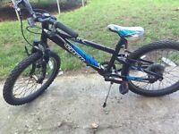 Kids bike trek