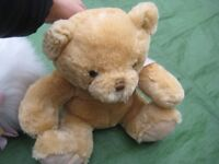 Brand New Ever So Cuddly Teddy Bear Soft Toy for ONLY £3.00