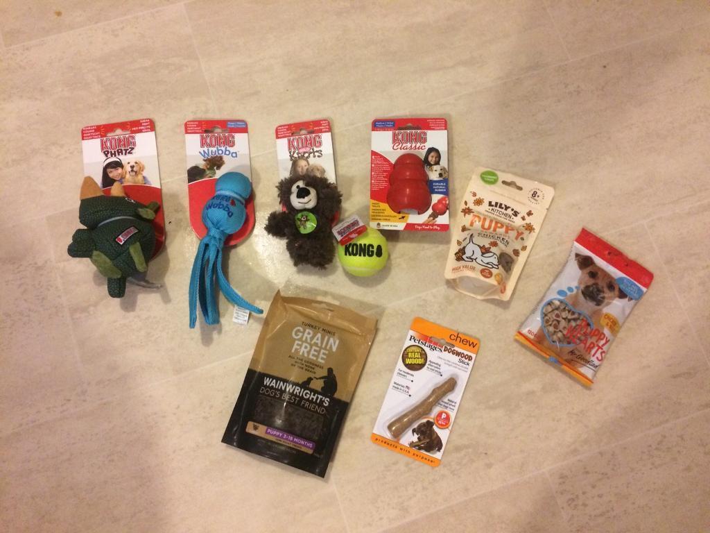Male puppy bundle toys & treats