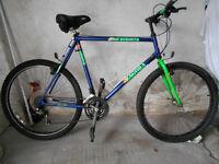 "Mens Mountain bike 21"" frame"