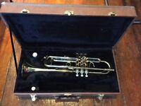 Artemis trumpet in mint condition