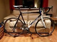 Fuji Team Pro Road Bike XL
