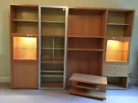 STORAGE UNIT / TV UNIT / DISPLAY CABINET - LIGNE ROSET