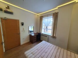 Fabulous double room/Bed Sit with shower WC near Elephant Castle tube including all bills & internet