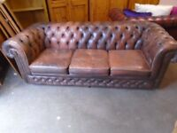 Chesterfield sofa, cigar brown