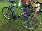 Triton men's bike for sale