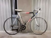 Fast Bicycle Raleigh for Men