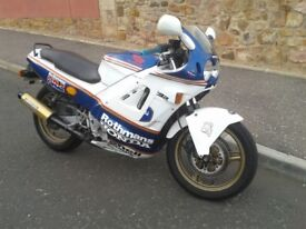 CLASSIC 1989 HONDA CBR600 jelly mould . rides great . smart condition . p/x possible . £895