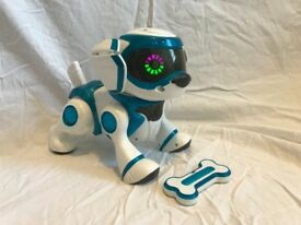 Teksta Robotic Dog