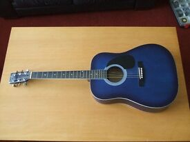 Freshman acoustic guitar in stunning blue shade