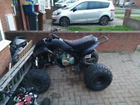 Quad bike 200 cc water cooled needs little work still rides 100%