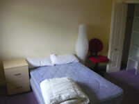 Double room to rent in house near city centre £250pm