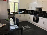 Superb Spacious One Bedroom Flat with Garden