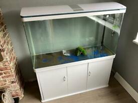 Tropical Fish Tank 300L Used