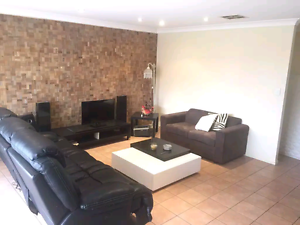 Room for rent 200 m from uni Sippy Downs Maroochydore Area Preview