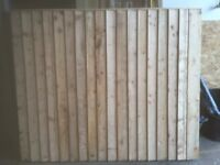 budget panels 5ftx6ft heavy duty untreated £17.00 each