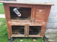Baby rabbit And Hutch And Cage
