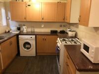 Looking for roommate £80 weekly