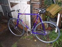 For Sale, Giant Peloton lite 2000 racing bike